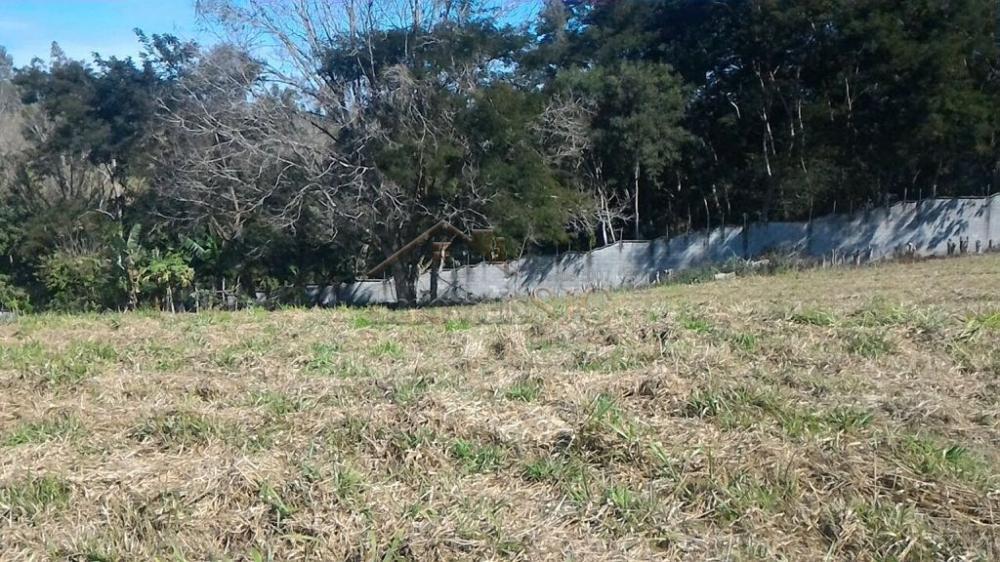 Comprar Terrenos / Condomínio em Jambeiro apenas R$ 320.000,00 - Foto 5