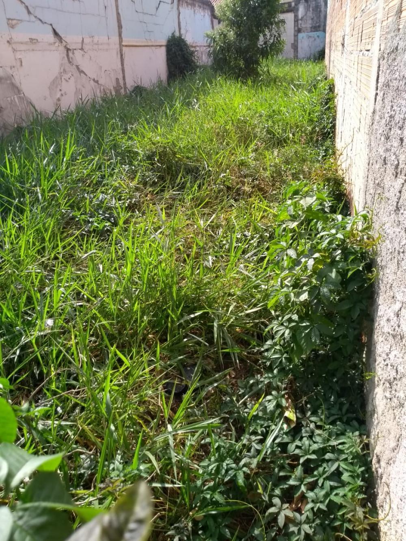 Comprar Terrenos / Terreno em São José dos Campos apenas R$ 185.000,00 - Foto 1