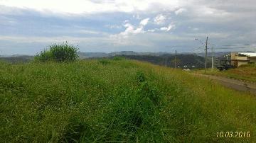 Comprar Terrenos / Condomínio em Jambeiro apenas R$ 239.000,00 - Foto 4