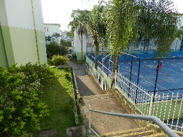 Alugar Apartamentos / Padrão em São José dos Campos apenas R$ 700,00 - Foto 12