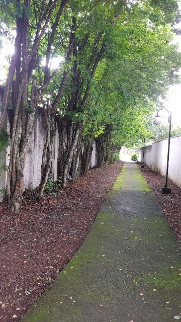 Comprar Casas / Condomínio em São José dos Campos apenas R$ 900.000,00 - Foto 40