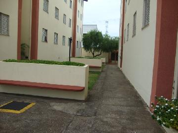 Comprar Apartamentos / Padrão em São José dos Campos apenas R$ 149.000,00 - Foto 17