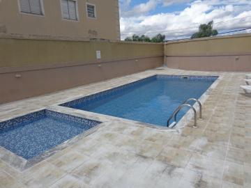 Alugar Apartamentos / Padrão em São José dos Campos apenas R$ 1.100,00 - Foto 15