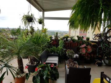 Comprar Apartamentos / Cobertura em São José dos Campos apenas R$ 520.000,00 - Foto 4